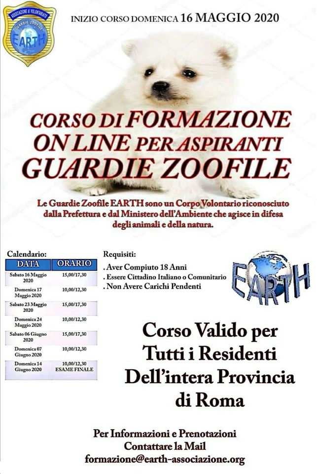 corso elearning